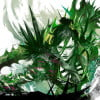 Guild Wars 2: Heart of Thorns beta event coming 7th August, playable at gamescom