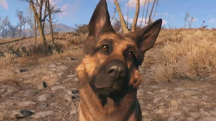 help-i-lost-dogmeat.jpg